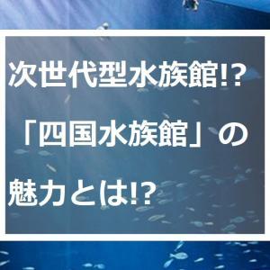 癒しの非日常体験!オープンしたばかりの「四国水族館」へ行ってみた!
