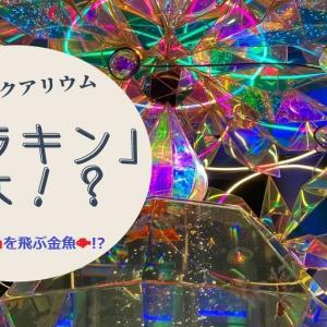 万華鏡のような空間で非日常体験!きらめきと癒しの「ソラキン」がスゴイ!!