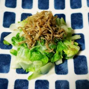 おひとりさまやみつき白菜のじゃこサラダTWOバージョン