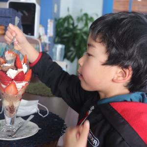 マナティ   苺パフェ plus+ 浜田市 浜田のアラーキー