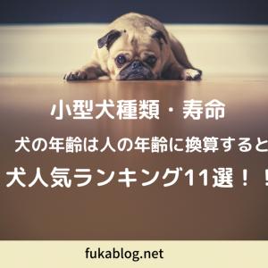 犬 種類 小型犬種類・寿命は?小型犬年齢 犬人気ランキング