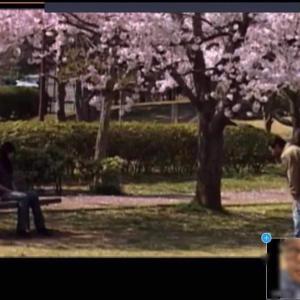 短編映画『家族日和』を観よう。面会交流をする親子の姿が考えさせられる。