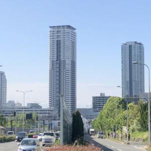6月2日(日)長良川考察。