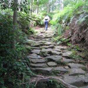 『尾鷲ニュース 529』~~熊野古道来訪者数、「夢古道の湯」が再開