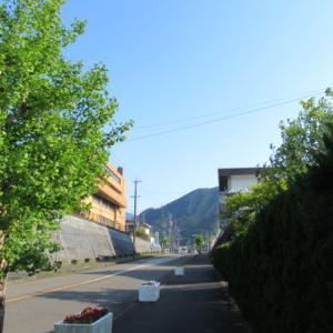 『 尾鷲ニュース 531 』~広域ごみ処理施設予定地、尾鷲よいとこスタンプ会、桃太郎甘夏ジュース
