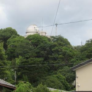 『 尾鷲ニュース 561 』~尾鷲ヒノキの卓上カレンダー、熊野市国際交流員バレンティーナさん退任
