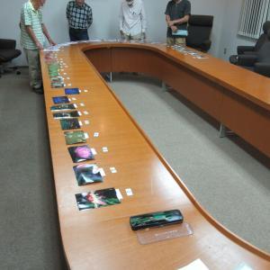 「フォト紀鷲」 20-09月例会