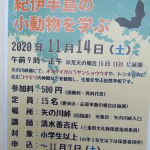 尾鷲市・熊野古道センター主催事業「熊野古道自然学校~紀伊半島の小動物を学ぶ」ご案内