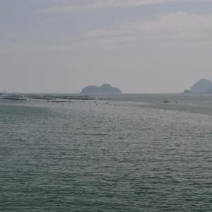尾鷲湾風景