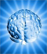 5×5特典付き。潜在意識活用マニュアルPotencial Secret(河本真)感想レビュー
