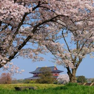 桜梅桃李の花☆なりたいあなたを叶える方法