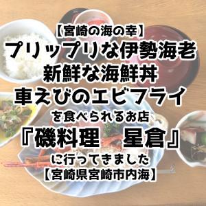 【宮崎海の幸】伊勢海老・海鮮丼・エビフライを食べられる『磯料理 星倉』