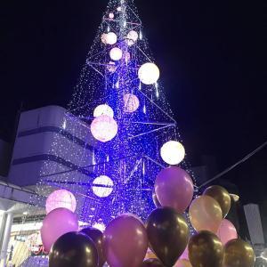 高知の冬の風物詩!中央公園のクリスマスツリーが点灯!あなたに幸せお裾分けにゃ!