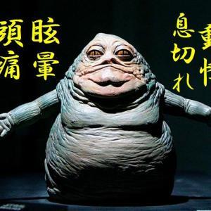 高知で飲んで食べて20キロ太ったお母ちゃん!ダイエット宣言す!