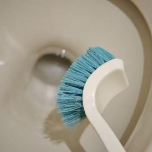 トイレブラシって汚いけどどう洗えばいいの?除菌もしたい!