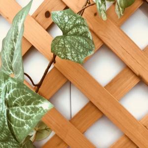 隣家との境目にフェンスを作りたい!勝手に目隠しするのはあり?