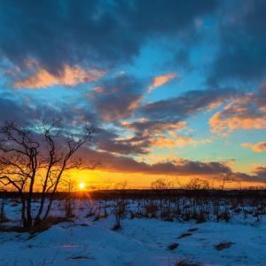 湿原の夕日