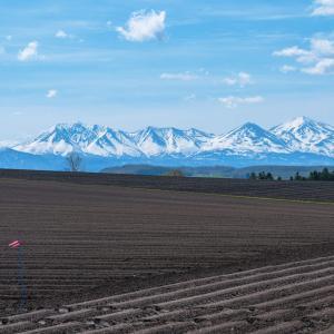 畝と大雪山