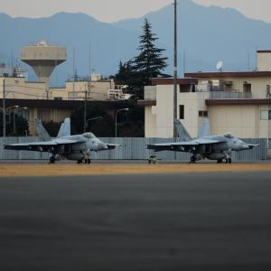 VFA-195(Chippy Ho!) F/A-18E✕2機 ~2020.1.25横田基地~