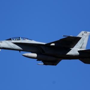 F/A-18F Diamondbacks(VFA-102) ~2020.2.9横田基地~