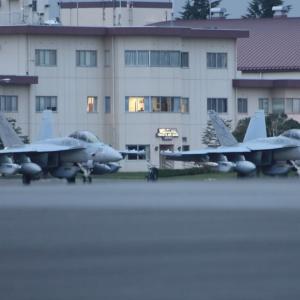 EA-18G ランサーズ(Lancers/VAQ-131) ~2020.9.17横田基地~