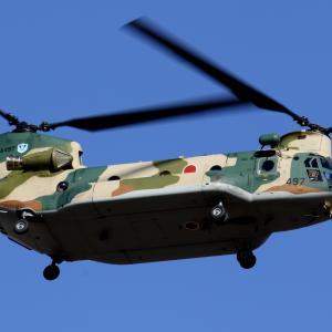 航空観閲式(CH-47JA、EC-225LP) 11/28航空自衛隊入間基地