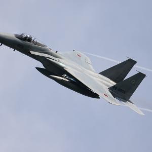 アグレス不在なれどさすがTAC部隊(F-15J) 7/26航空自衛隊小松基地