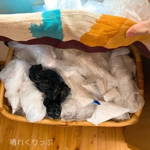 レジ袋の有料化で、ゴミ箱にセットするビニール袋どうする?