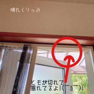 買えば7万円のアコーディオン網戸の修理