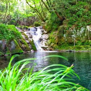 日本(茨城県)の大自然をお気に入りの写真とともにご紹介