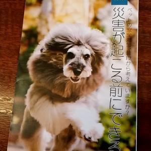 ペットとのステキな暮らし情報「Lazo vol.27」