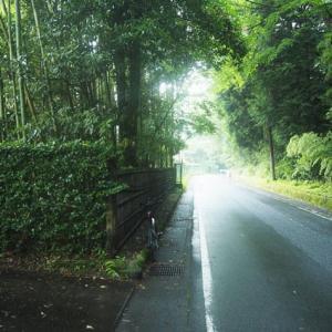 箱根やまなみ林道 その1