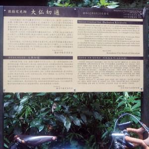 鎌倉・大仏切通