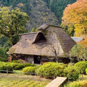 情操教育に日本昔ばなし『ムカデの医者むかえ』よみきかせ《てばなし読書》