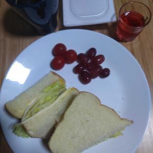 6月14日  朝食、お弁当🍱