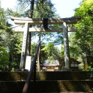 古事記の神様と神社・ご近所編Part3(9)~蛟蝄神社~再び、これ読めますか?