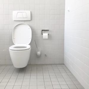 トイレの奥に手で突っ込んで掃除してみた