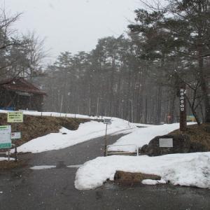 ⑪ 鞍掛山登山897M 3キロ(2020.3.20)