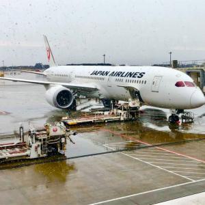 【日本~ドイツ直行便】コロナウイルスの影響による航空会社の運航状況