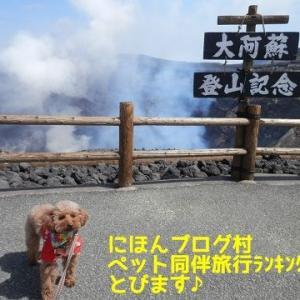 犬連れで泊まった宿【九州】
