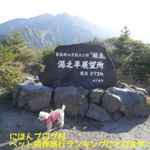 桜島 湯之平展望所からの眺望だわん