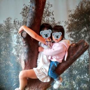 【王子動物園】パンダのお食事タイムで狙うべき場所を紹介!子供がコアラになりきれるインスタ映えスポットも♪