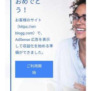 【Googleアドセンス】初心者主婦ブロガーがブログ開設13日目&申請2回目で合格できた理由を分析
