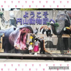 【札幌市円山動物園】1歳児も興味津々!行動展示のおもしろい新施設が続々オープン!