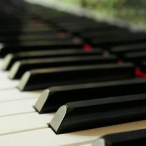 ユジャ・ワンさんによるピアノ演奏「熊蜂の飛行」、まさに神業。手の動きがあり得ない
