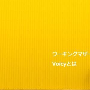 【2019年】ワーママ必見!片耳イヤホンとVoicy