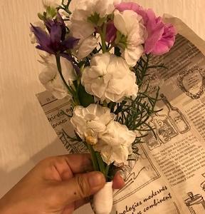 お花の定期便、ひと月500円から始められる!実際に注文してみてどうだった?
