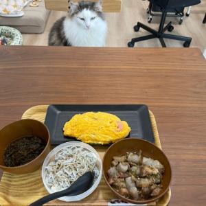 ホットクックレシピ 塩麹牛すじコンニャク