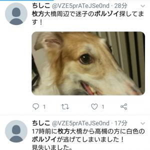ご協力有難うございます。(2019/11/11迷犬)