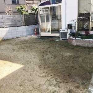 芝生の植え替え。
